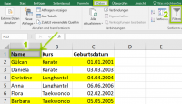 Excel nach Farben filtern - Autofilter
